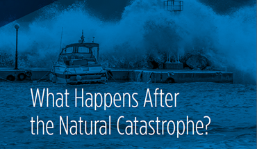 What Happens After the Natural Catastrophe
